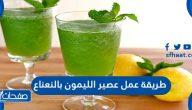 طريقة عمل عصير الليمون بالنعناع بأكثر من طريقة